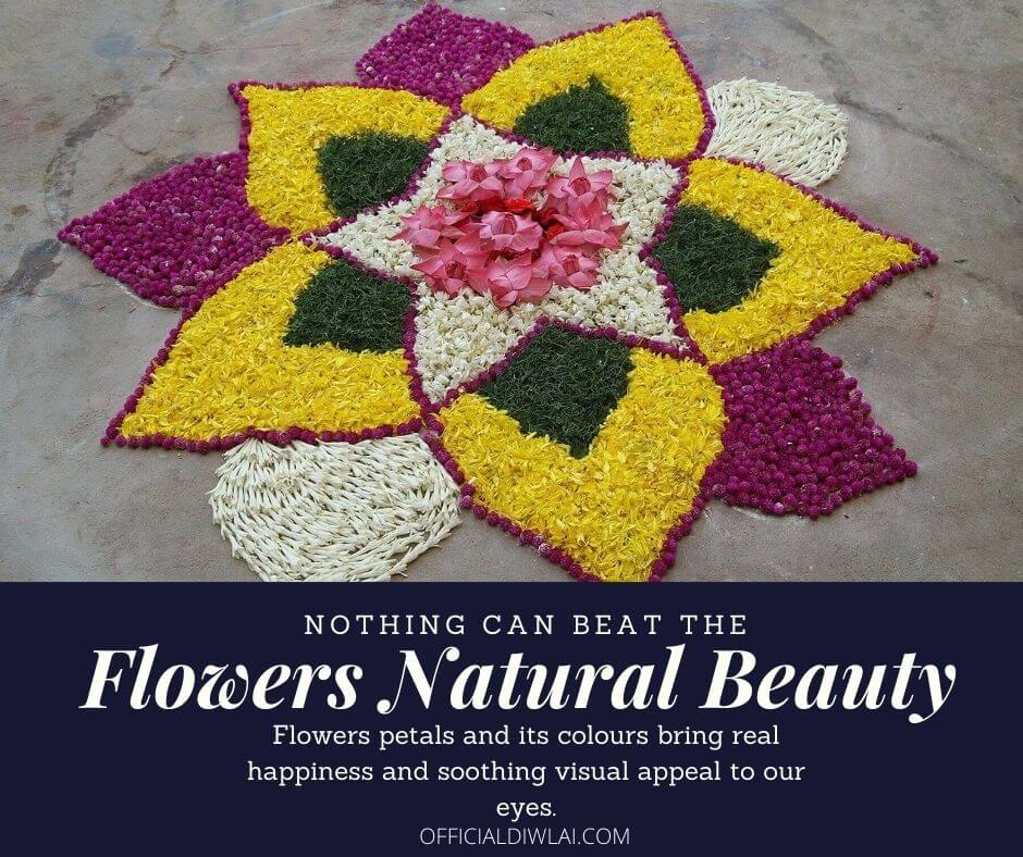 Nothing can beat the flowers natural beauty, Flowers petals and its colours bring real happiness and soothing visual appeal to our eyes